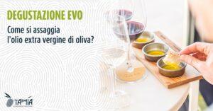 assaggiare olio di oliva